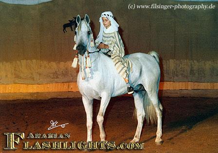 Araber bbw om ahmed